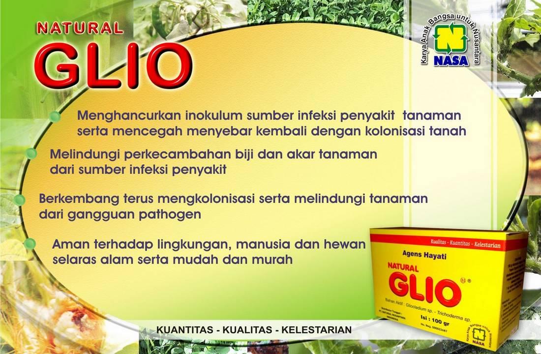 Gambar Natural GLIO Nasa Natural Nusantara