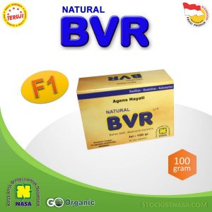 Natural BVR Nasa PT Natural Nusantara