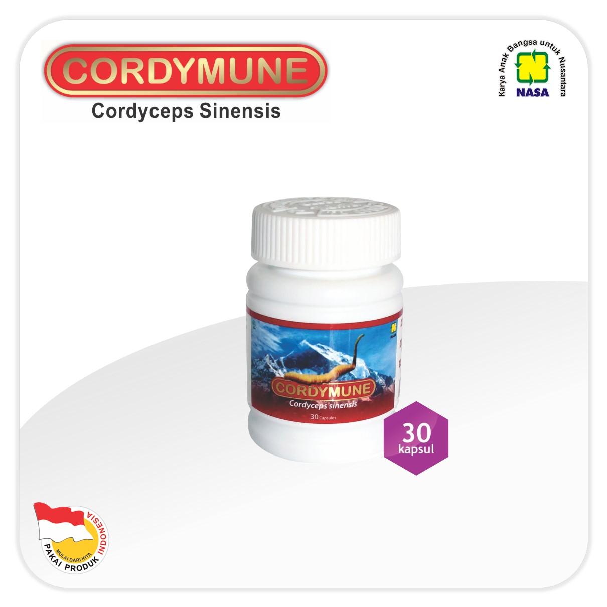 Cordymune Cordyceps Sinensis
