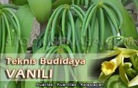 Gambar Teknik Budidaya Vanili
