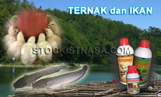 Produksi Ternak dan Ikan