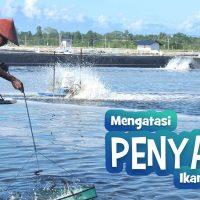 Mengenal dan Mengatasi Penyakit Ikan dan Udang