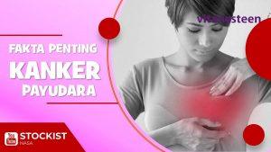Kanker Payudara & Cara Mencegahnya