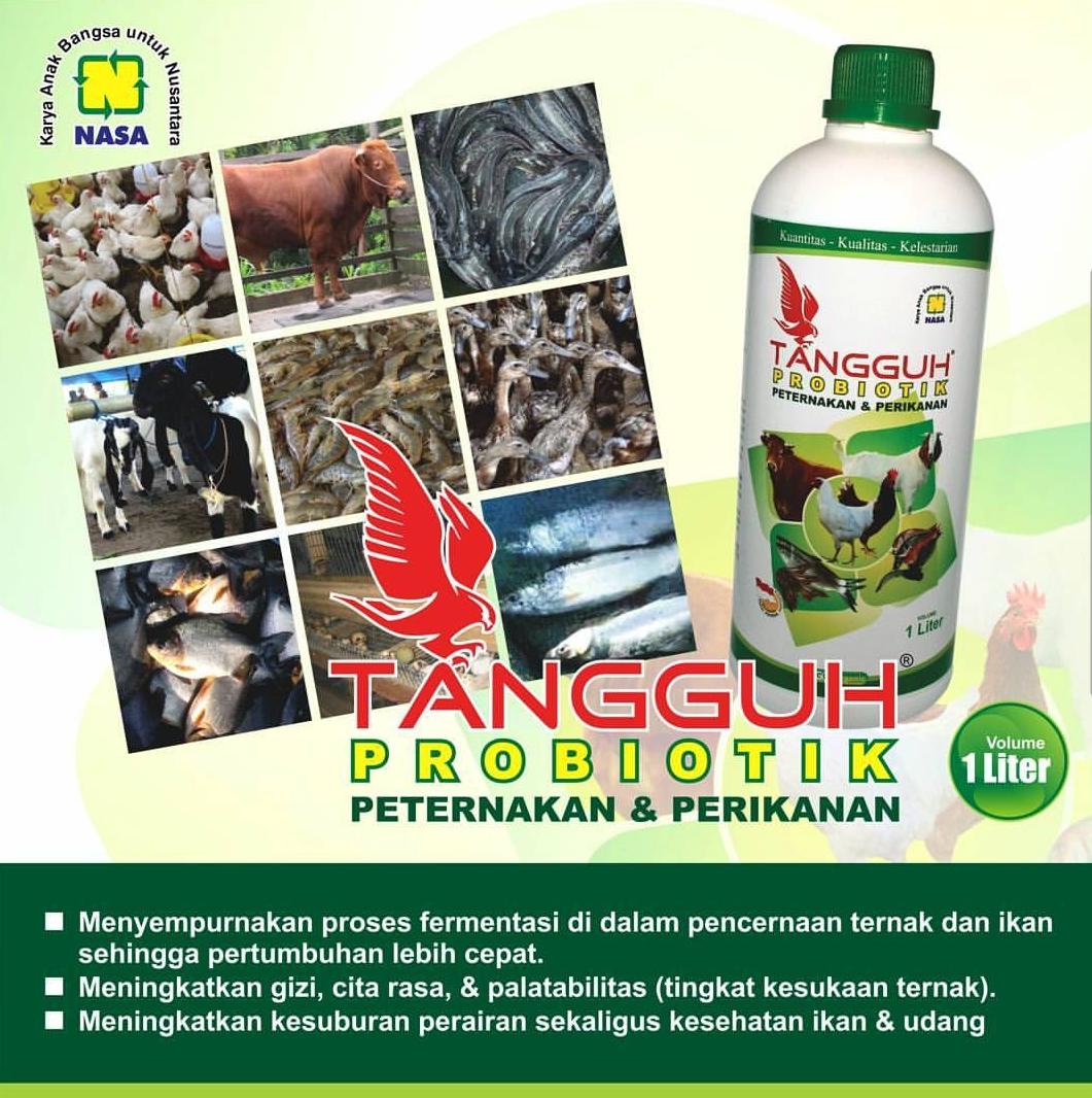 TANGGUH Probiotik 2