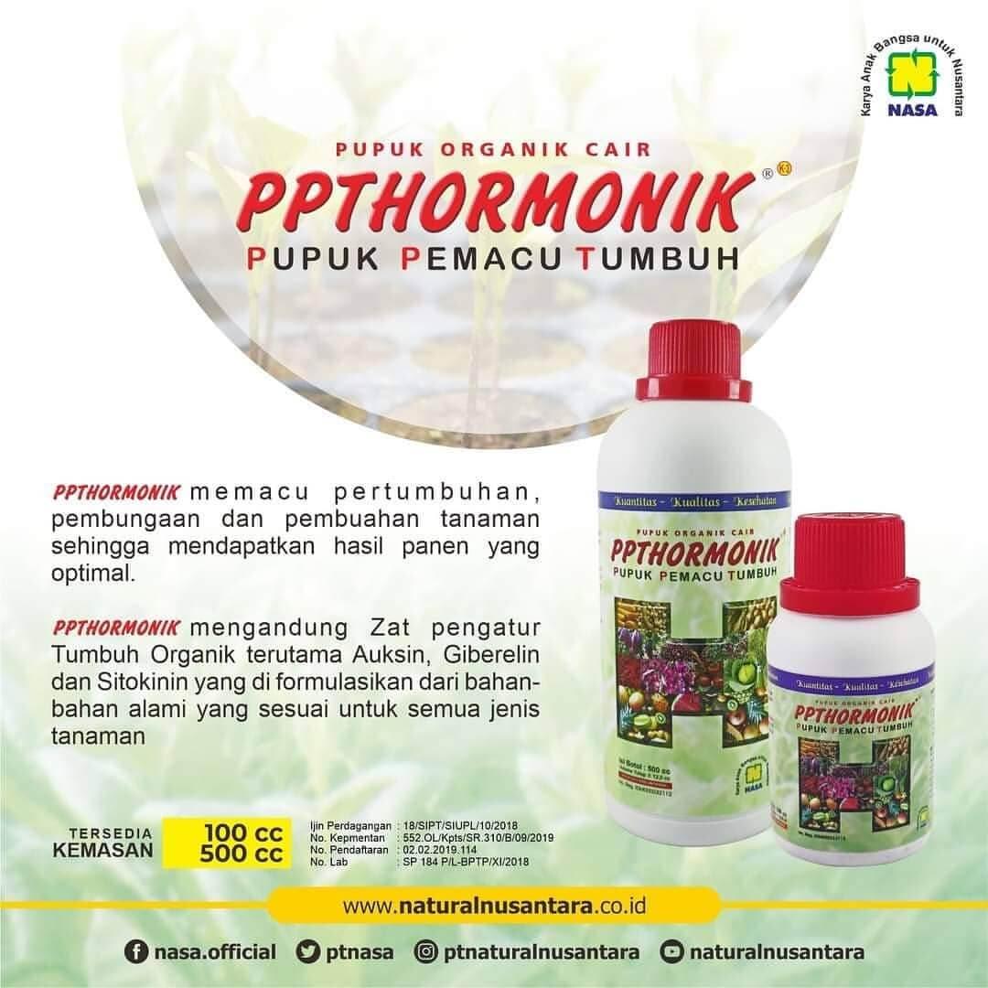 Gambar PPT Hormonik Nasa