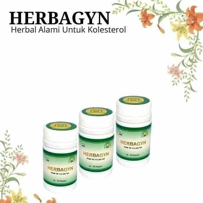 Herbagyn Anti Kolesterol